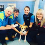 Jessie - RSPCA - Let's Make Better